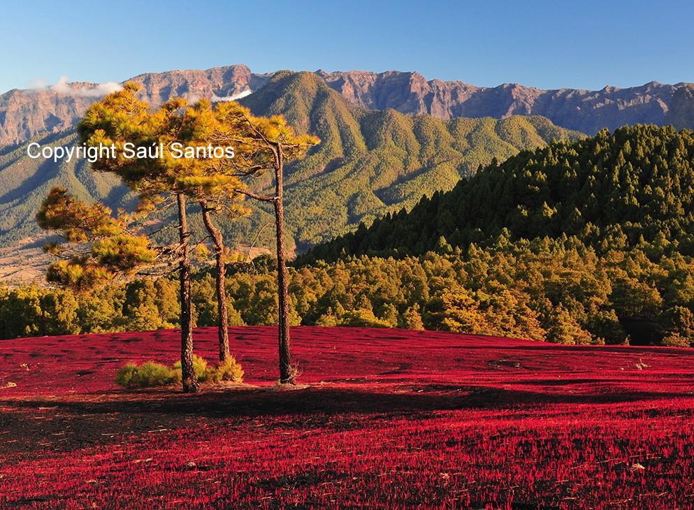 Beeindruckende NaturerlebnisseDie spektakuläre Landschaft unserer Insel läd zur Erkundung der einzelnen Teile ein.